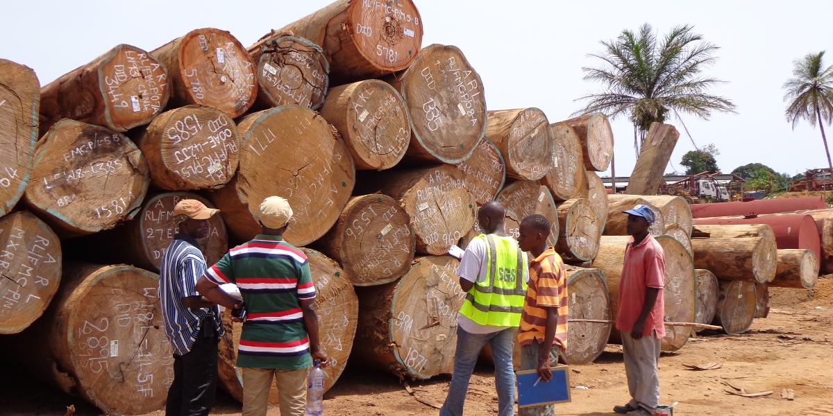 liberia logs copy
