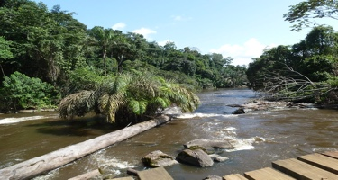 Congo Republic establishes committee for overseeing rollout of TLAS