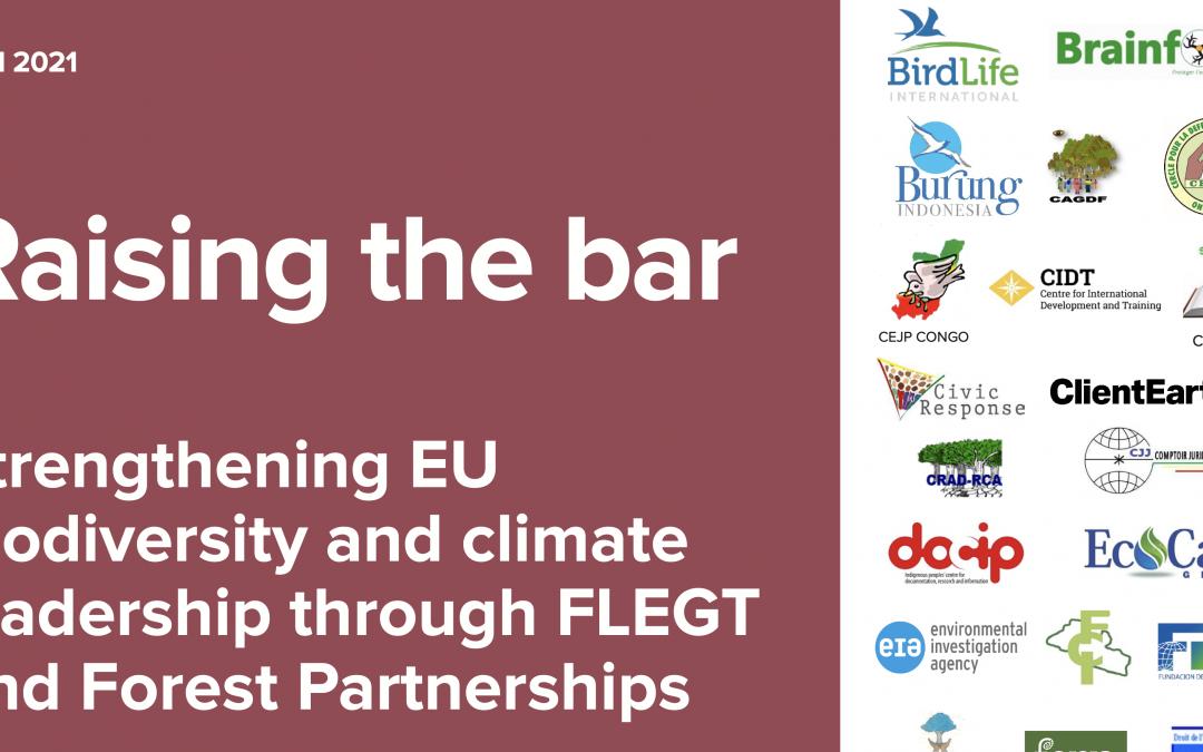 Raise the forest protection bar with FLEGT, urge CSOs